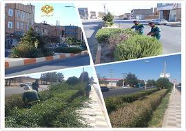 عملیات پاکسازی , اصلاح و هرس فضای سبز بلوار فاطمه زهرا (س) و مرزداران