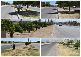 پاکسازی علف های هرز و خشک فضای سبز بلوار های و میادین سطح شهر