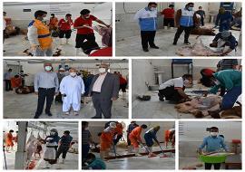 ذبح بهداشتی قربانی همشهریان عزیز در کشتارگاه شهرداری خواف